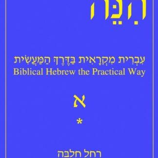 Biblical Hebrew the Practical Way