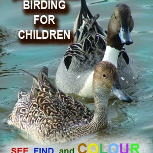 Birding for Childreen