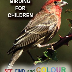 Birding for Childreen VL2