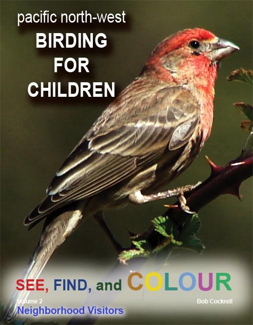 Birding for Childreen VL2