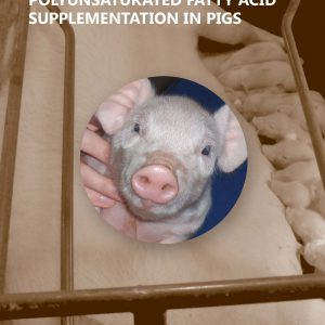Litter Birth Weight and Maternal n 3 LCPUFA Supplementation in Pigs