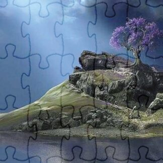 The Puzzle of Life